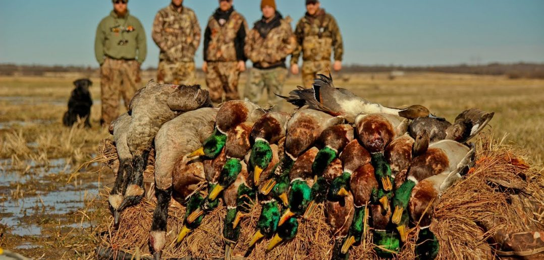 Duck Hunting | The Complete Guide For Beginners | Today's Hunter®