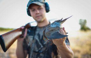 man dove hunting