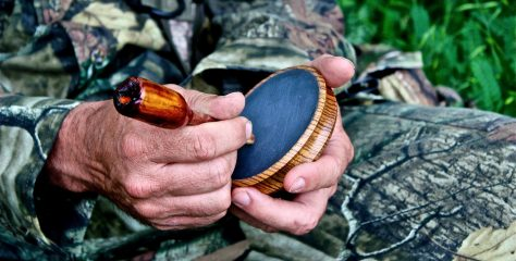 Turkey Call: The Sound of Success