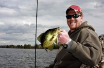 Crappie fish caught on a freshwater lake