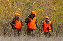 Hunters in Blaze Orange